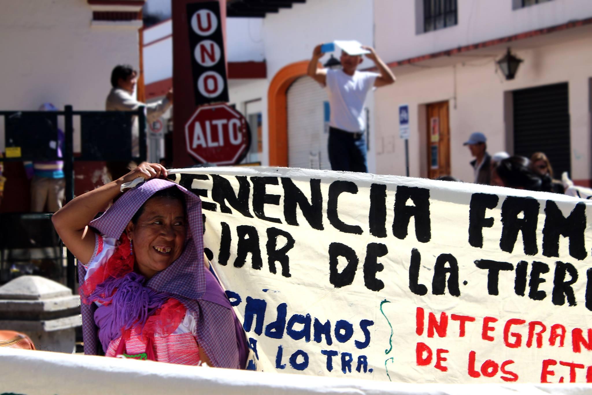 Curso Extractivismo